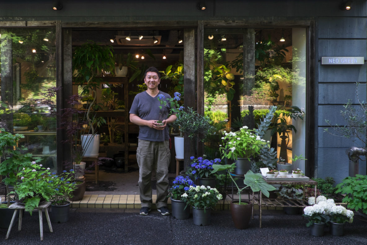 Hitoshi Shirata's plant and bonsai store Neo Green