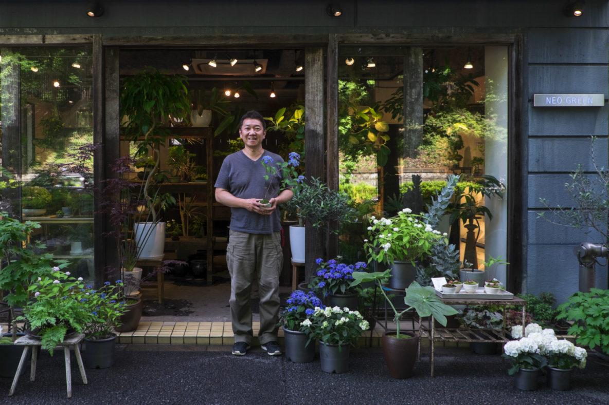 Hitoshi Shirata's plant and bonsai store Neo Green